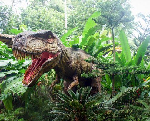 Geschenke für Dinosaurier Fans
