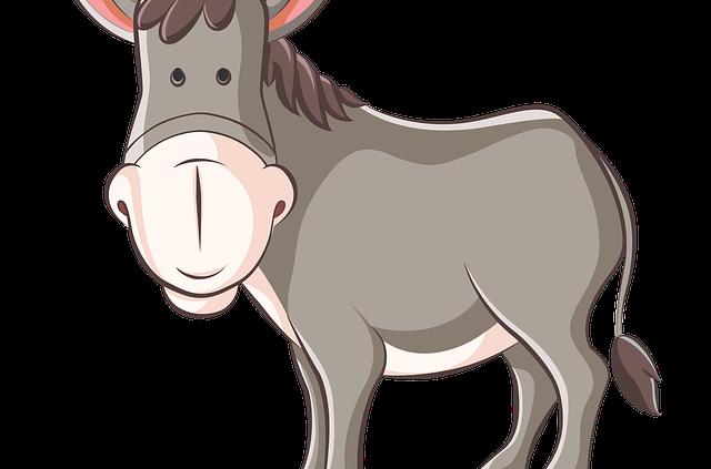 Geschenkidee für Eselliebhaber